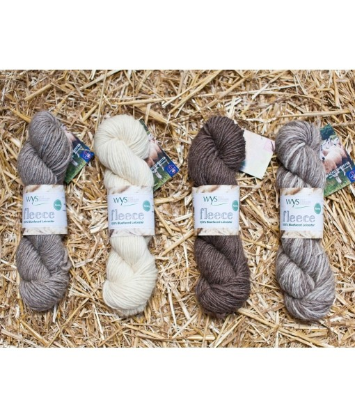 West Yorkshire Spinners BFL Roving Shades